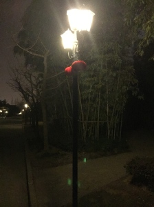 Red lantern decorations hang from street lamps.