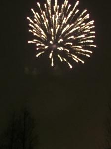 Fireworks 1 2015